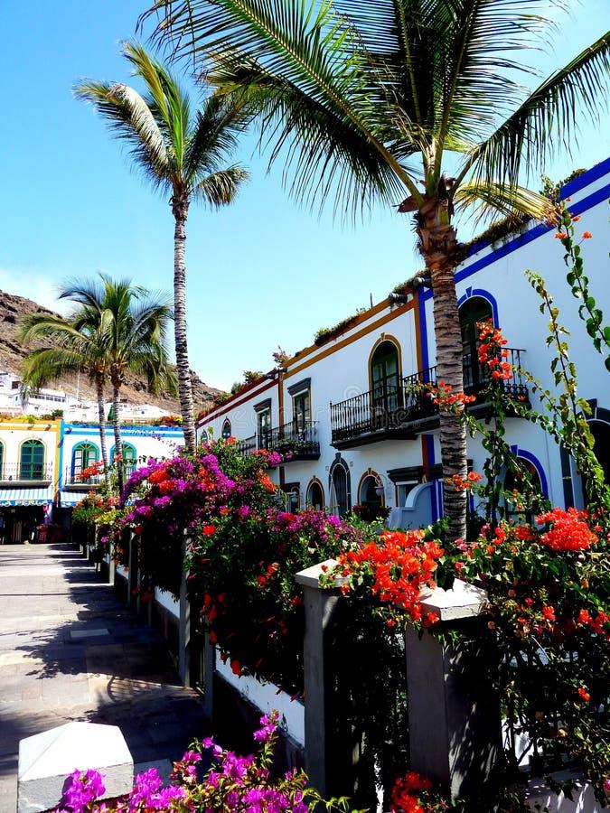 Bougainvillea die in romantische steeg in puertohol mogan bloeien in Gran Canaria, Spanje stock afbeelding