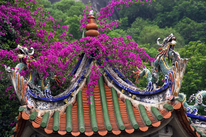 Bougainvillea Roof China Stock Images Image 3194514