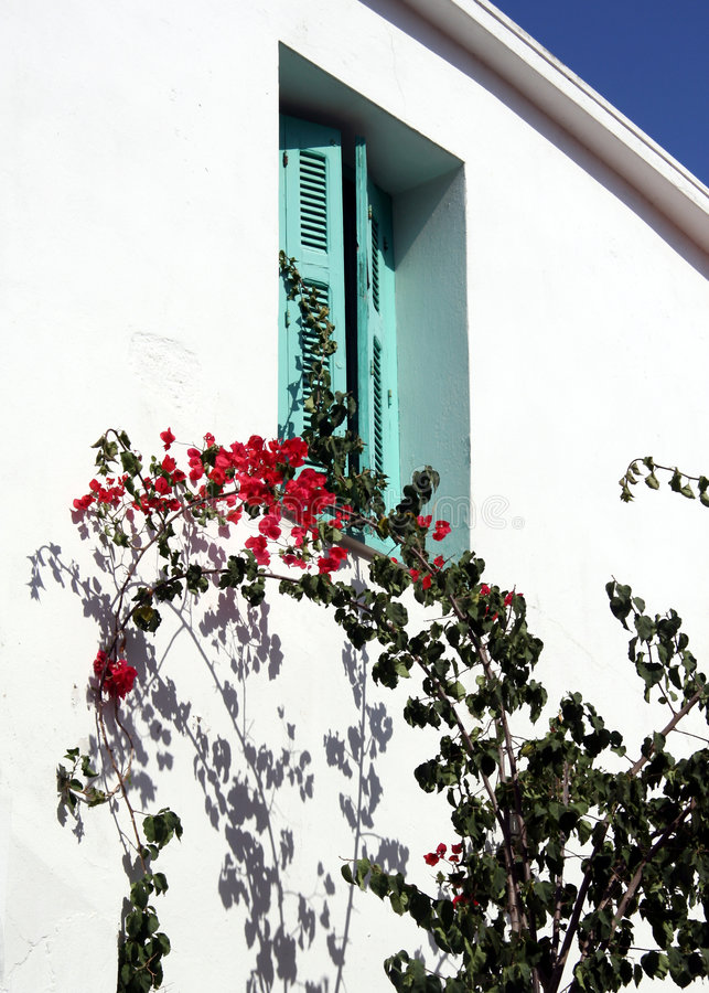 Bougainvillea and shutters royalty free stock photos