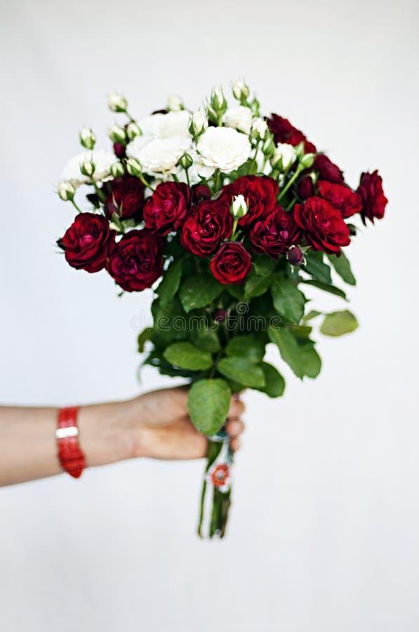 Bouget de Rose photographie stock libre de droits