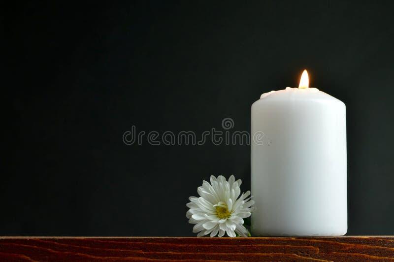Bougie brûlante et fleur blanche photographie stock