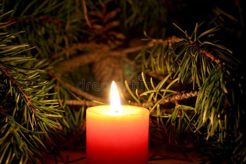 Bougie de Noël avec le brunch d'arbre du ` s de nouvelle année sur le fond foncé photographie stock libre de droits