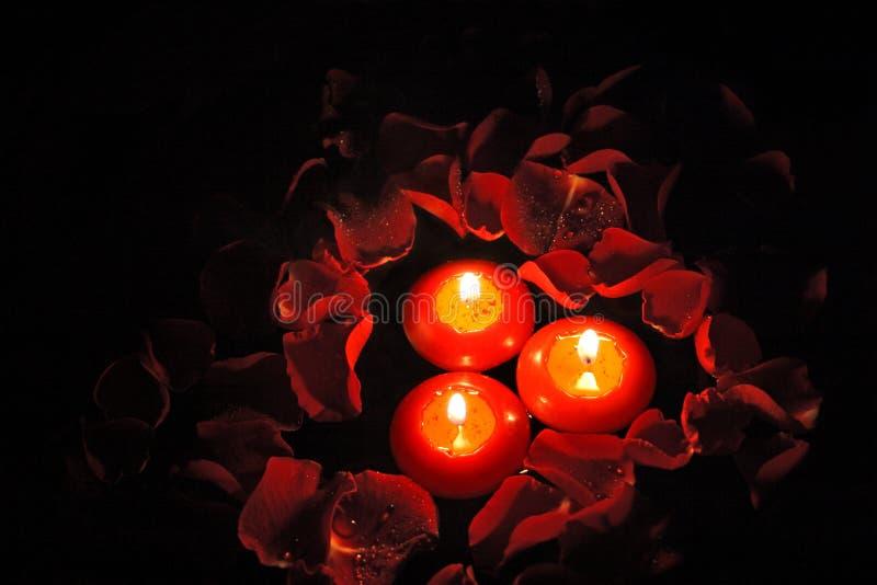 Download Bougies Avec Les Pétales Roses _1 Image stock - Image du lumière, baisses: 739897