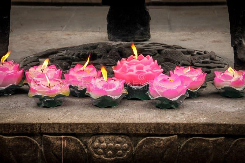 Bougies roses de lotus image libre de droits