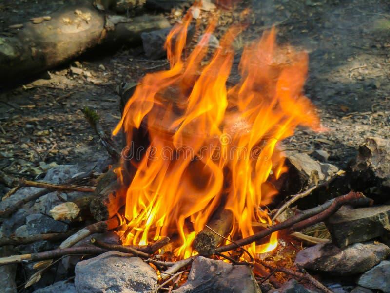 Bouilloire de touristes fumée au-dessus du feu de camp le soir photographie stock libre de droits