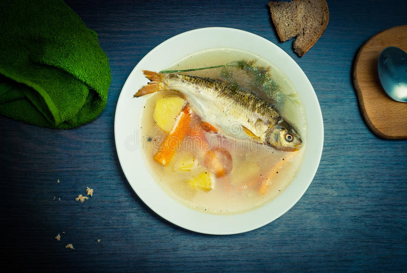 Bouillon de poissons photo stock