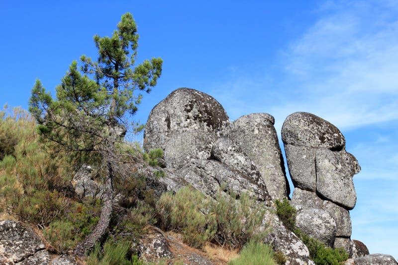 Boulder des Kopfes des alten Mannes in den portugiesischen Bergen stockbilder