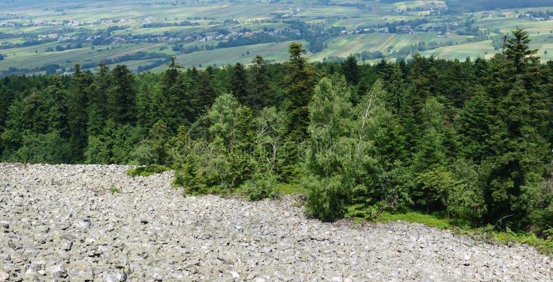 Boulder field, Swietokrzyskie Mountains, Poland stock photos