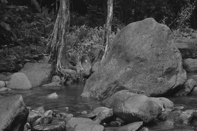 Download Boulder frontal image stock. Image du noir, centrales - 87706257