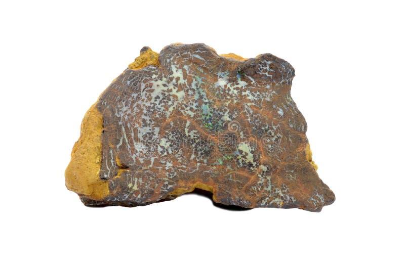 Boulder Opal stock images