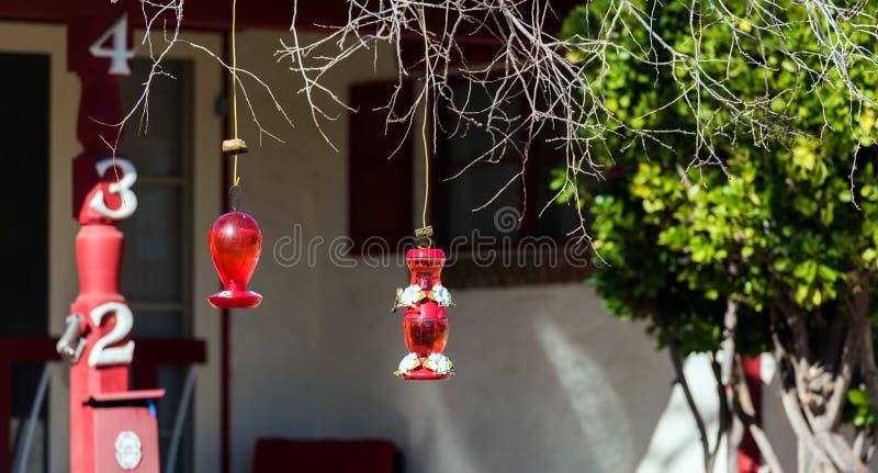 BOULDER, U.S.A. - 2 FEBBRAIO 2018: Bevitori di vetro del colibrì Con il fuoco selettivo fotografia stock