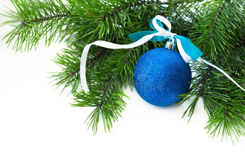 Boule bleue avec la branche de ruban et de Noël-arbre photo stock