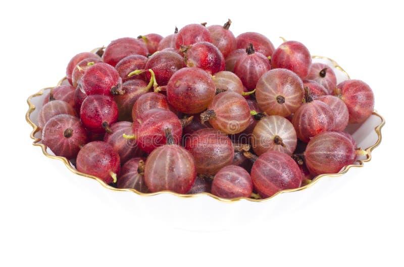 Boule de fruits de Gooseberry isolé sur fond blanc image stock