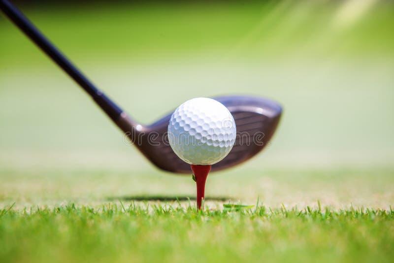 Boule de golf à la position de repos de pièce en t sur le vert photographie stock