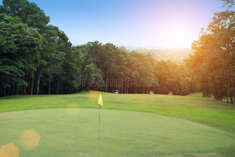 Boule de golf brouillée sur la pièce en t dans le beau terrain de golf avec le coucher du soleil photo stock