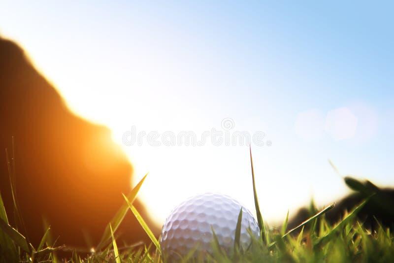 Boule de golf brouillée sur la pièce en t dans le beau terrain de golf avec le coucher du soleil photos stock