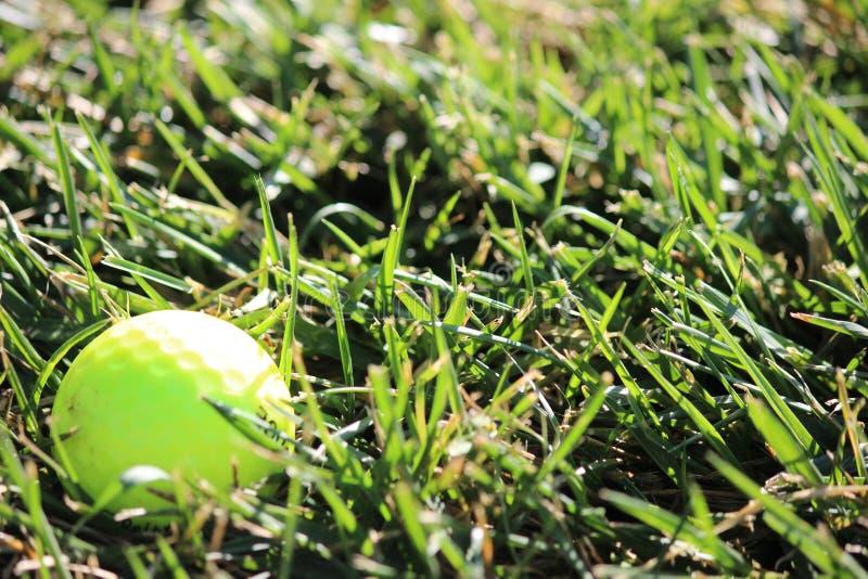 Boule de golf jaune de pratique photos libres de droits