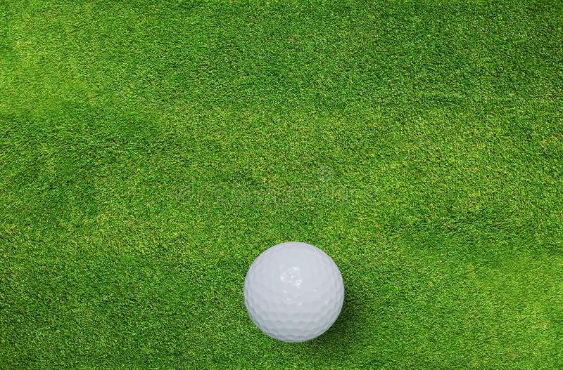 Boule de golf sur l'herbe verte du terrain de golf Fond de sport de golf photo libre de droits