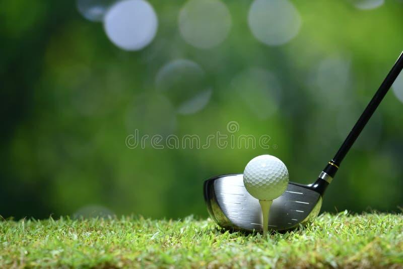 Boule de golf sur l'herbe verte prête à être frappé sur le terrain de golf photo stock