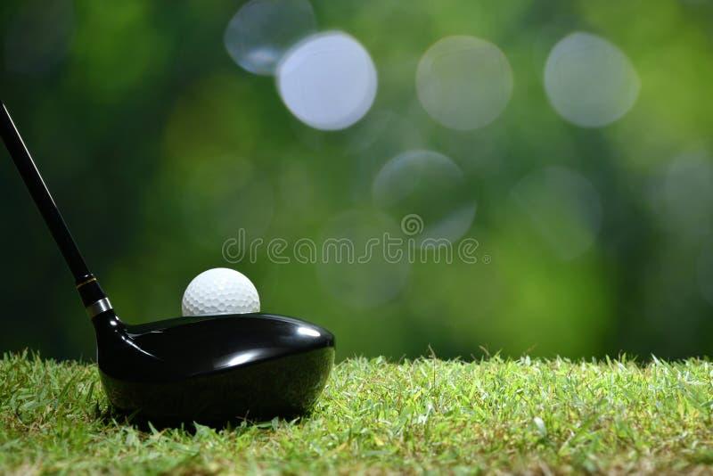 Boule de golf sur l'herbe verte prête à être frappé sur le terrain de golf photos libres de droits