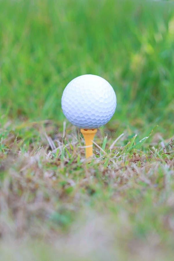 Boule de golf sur rugueux photos libres de droits
