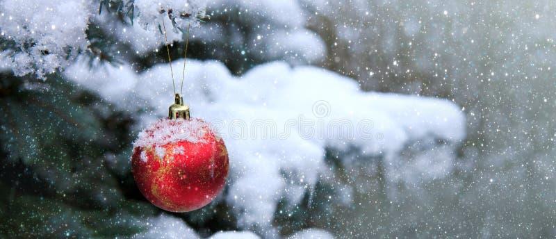 Boule de Noël accrochant sur une branche d'arbre de sapin Fond de Noël photos libres de droits