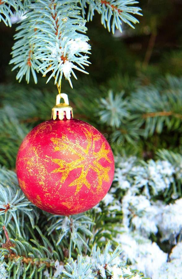Boule de Noël accrochant sur une branche d'arbre de sapin Fond de Noël images libres de droits