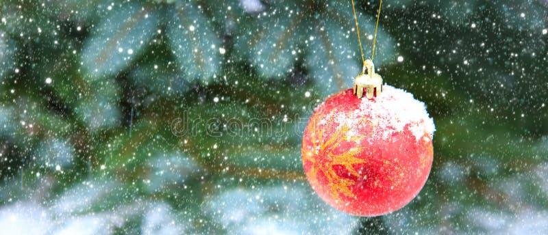 Boule de Noël accrochant sur une branche d'arbre de sapin Fond de Noël photos stock