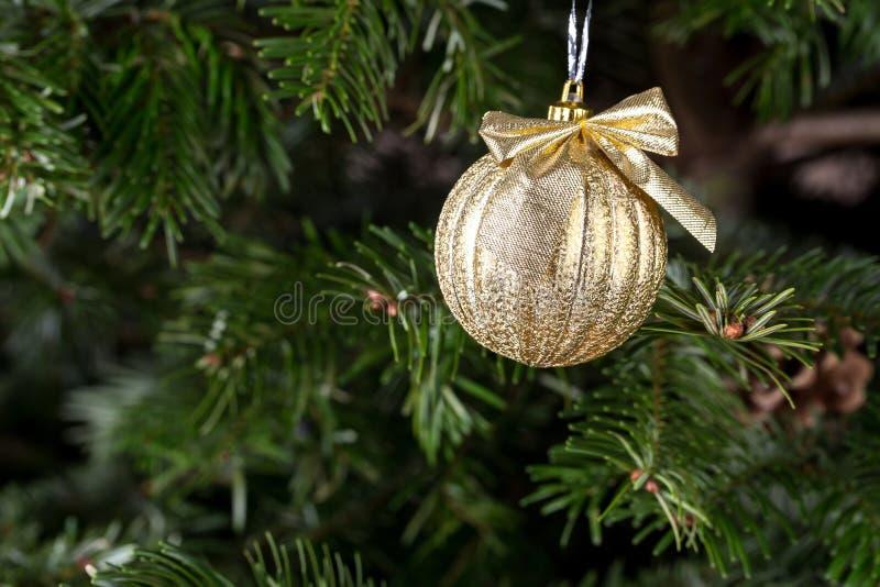 Boule de Noël sur le pin image stock