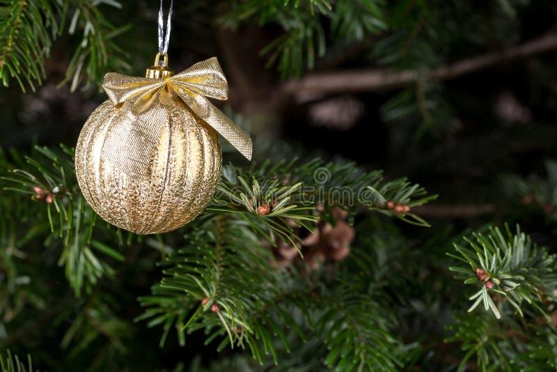 Boule de Noël sur le pin photo libre de droits