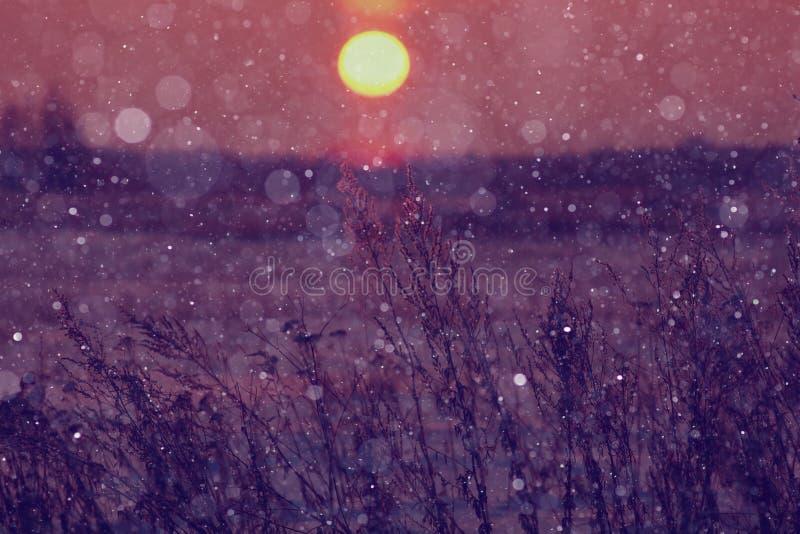 Boule du soleil d'hiver photos libres de droits