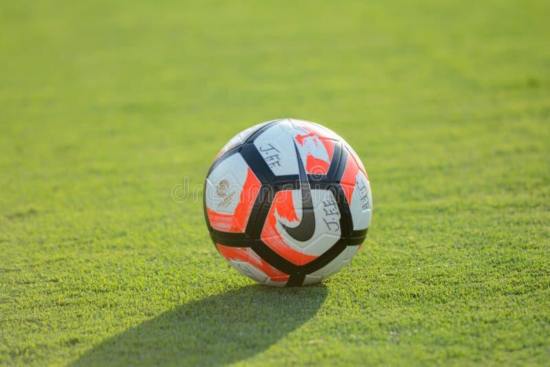 Boule officielle pendant le Copa Amérique Centenario photographie stock libre de droits