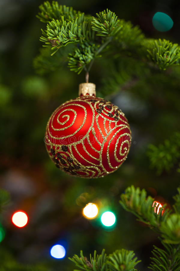 Boule rouge de Noël sur le sapin photographie stock libre de droits