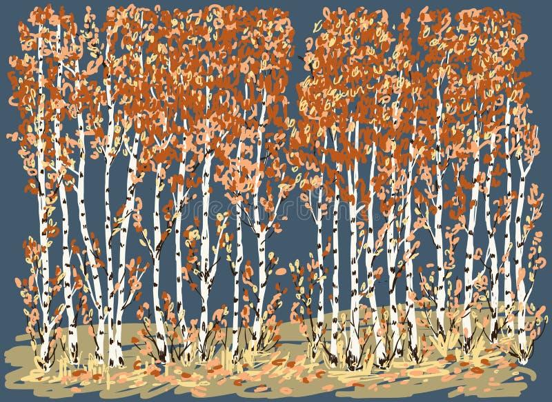 Bouleaux d'automne illustration de vecteur