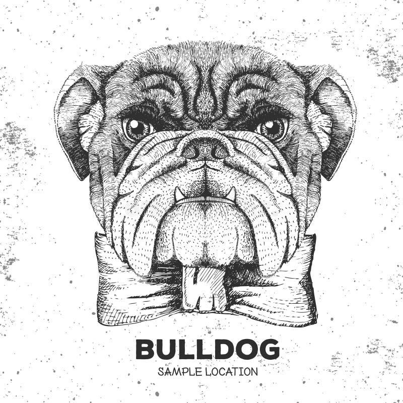 Bouledogue d'animal de hippie Museau de dessin de main du chien animal illustration de vecteur