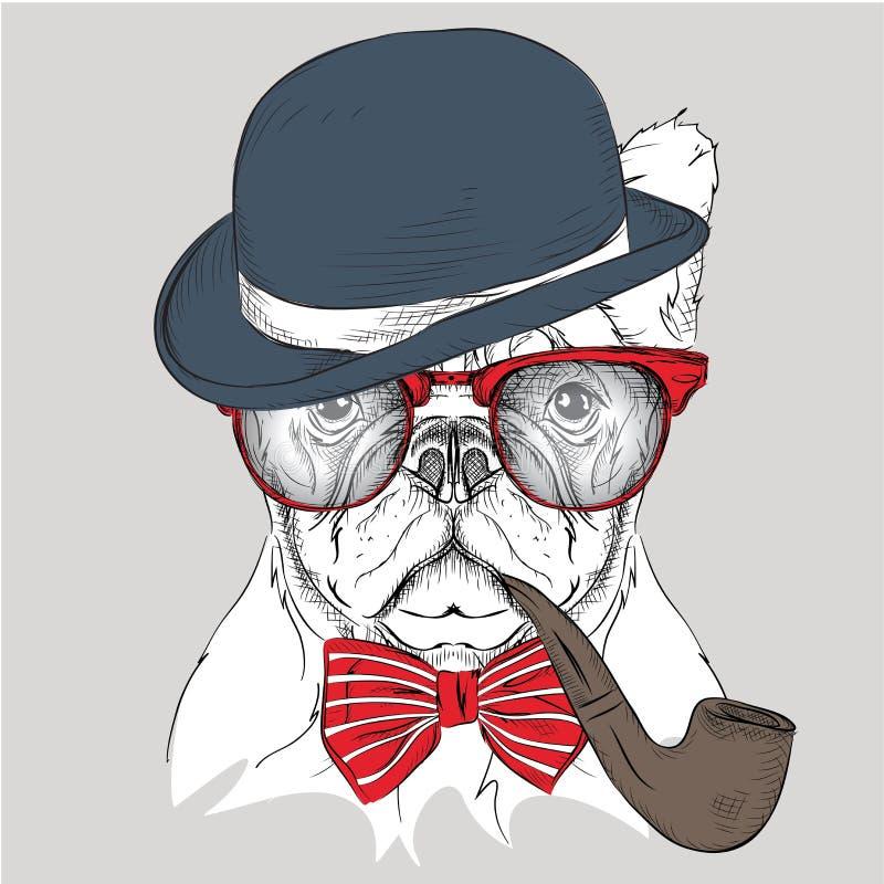 Bouledogue de portrait d'image dans le chapeau, le foulard et les verres avec le tuyau de tabac Illustration de vecteur images stock