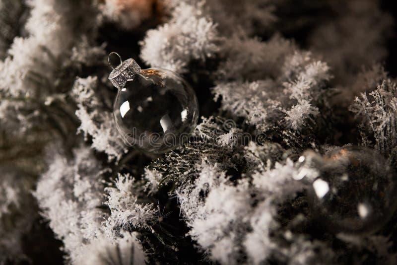 Boules de Noël transparentes sur l'épinette image libre de droits