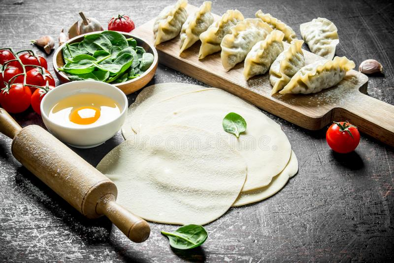 Boulettes crues de gedza Gedza de boulette de préparation avec des épinards photographie stock