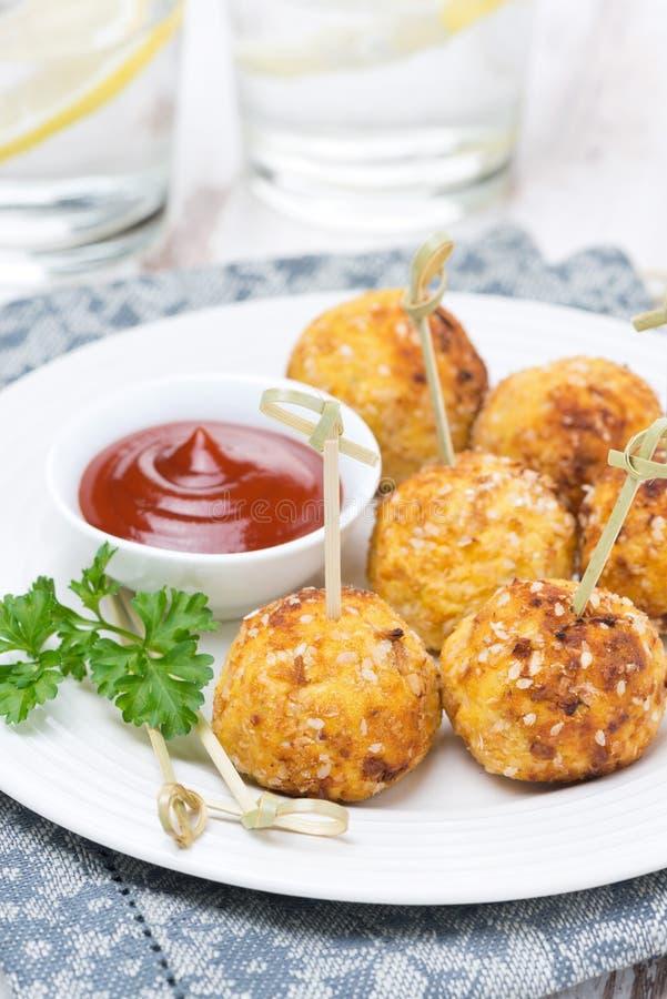 Boulettes de viande de poulet avec la sauce tomate, plan rapproché image libre de droits