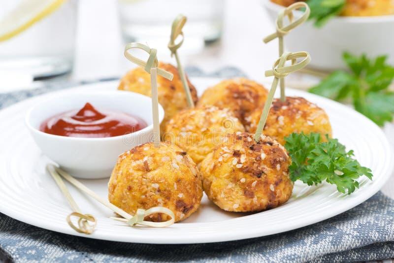 Boulettes de viande de poulet dans le panage avec la sauce tomate du plat image stock