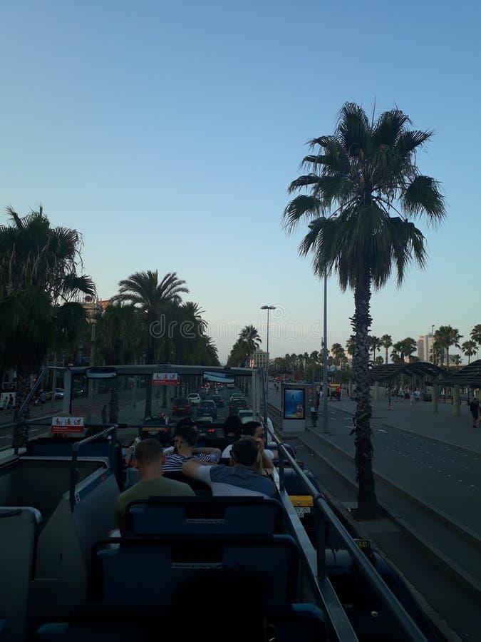 Boulevard en plein air Barcelone de citylights de coucher du soleil de palmtrees d'ontheroad de touristbus photographie stock libre de droits