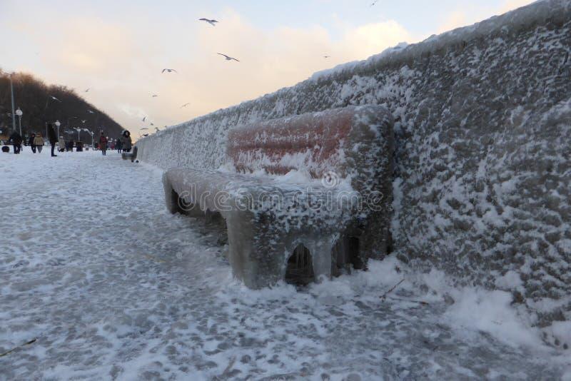 Boulevard in ijs, Gdynia, Polen wordt behandeld dat royalty-vrije stock foto's
