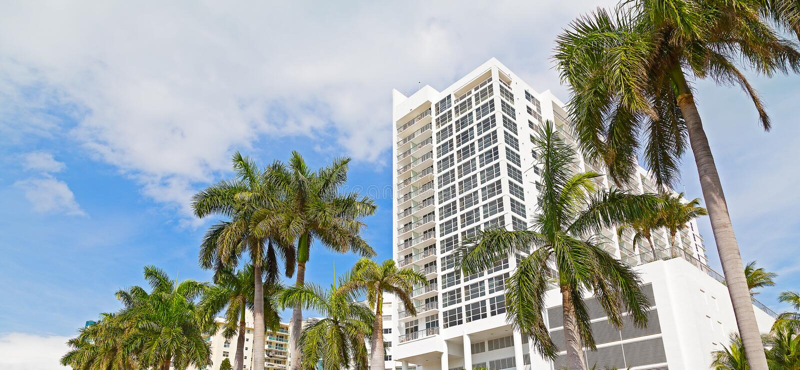Boulevard im Miami Beach, Florida, USA mit hohen Palmen und weißen Gebäuden lizenzfreies stockbild