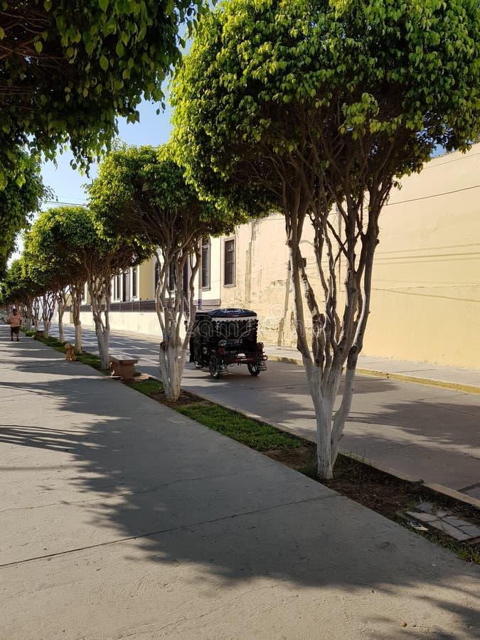 Boulevard in Pacasmayo royalty-vrije stock afbeelding