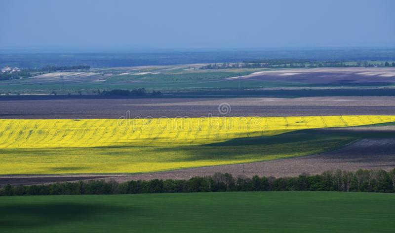 Boundless yellow, green and grey fields separated by trees. Traditional ukrainian landscape blue grass nature rural summer farm flower sky spring sun clouds stock photography