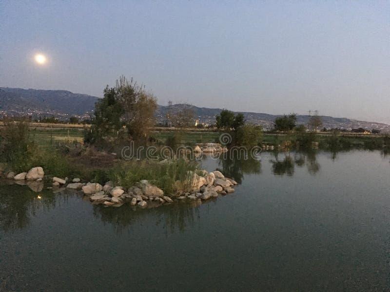 Bountiful pond stock photos