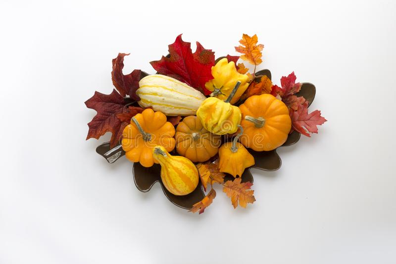 A bounty of pumpkins, gourds & fall leaves shot from above on a white background stock photography