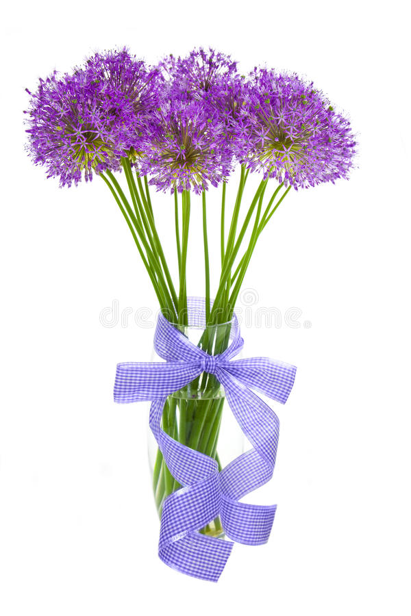 Bouqet of Allium / isolated on white. Bouqet of Allium / beautiful flowers / isolated on white royalty free stock photo