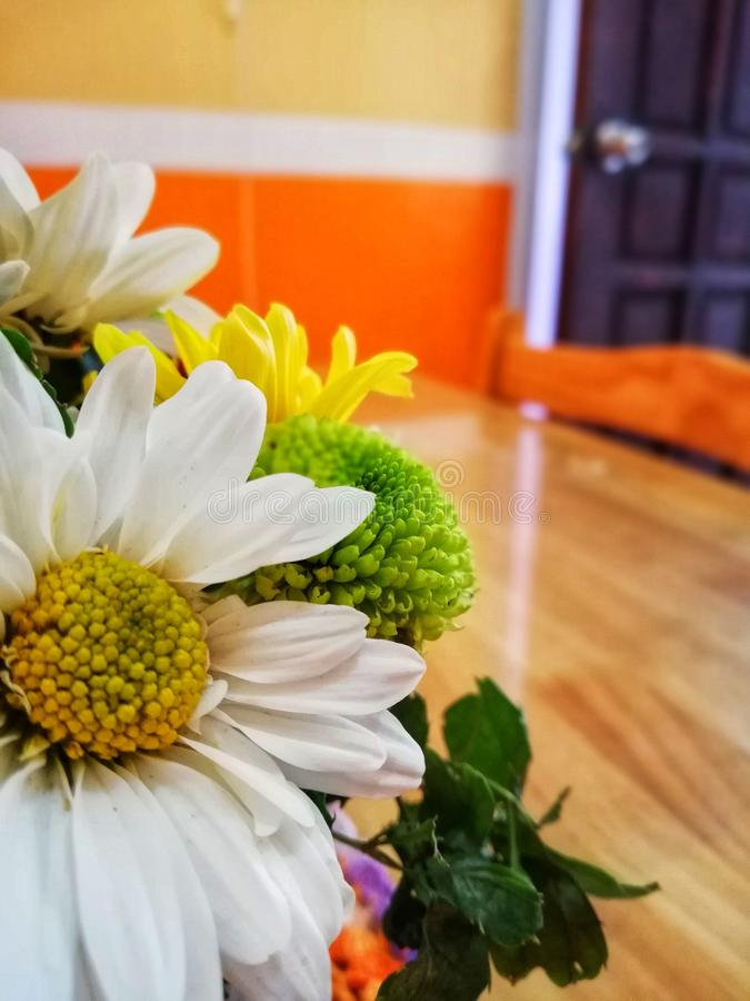 Flowers. Bouqet of Flowers on the table stock photos