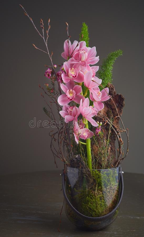 Bouqet of pink orchid. Colorful bouqet of pink orchid on a gray background stock photography